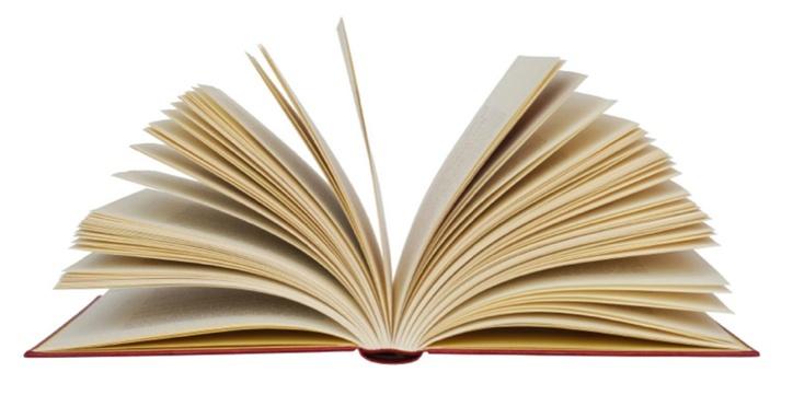 lectura-publicacion