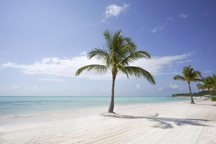 Que ver en Punta Cana